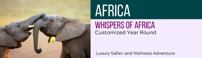 wp-AFRICA-featured